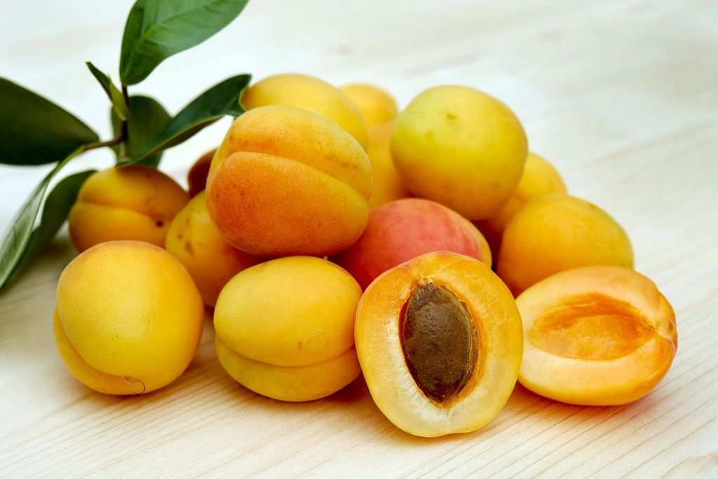 the-health-benefits-of-dried-apricots