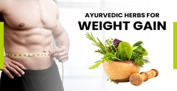 Ayurvedic Herbs for Weight gain