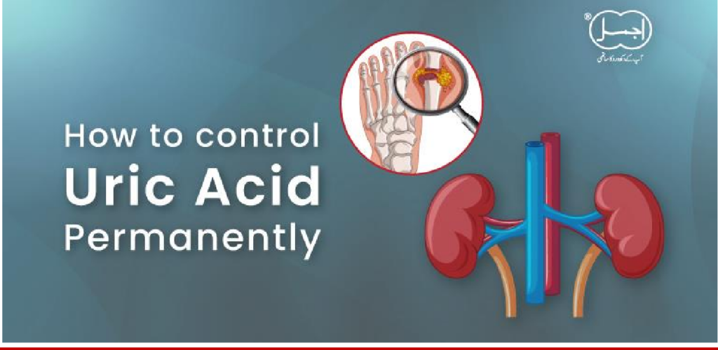 HOW TO CURE URIC ACID PERMANENTLY