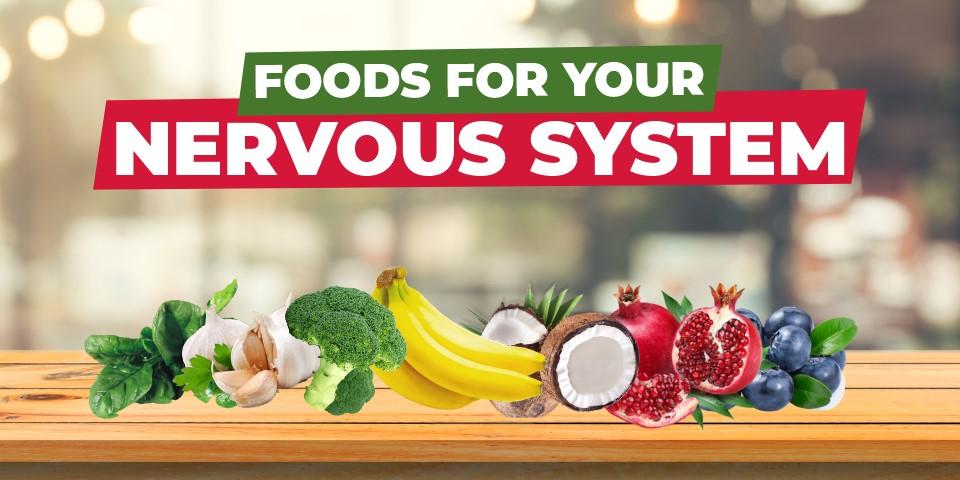 10 BEST FOODS TO STRENGTHEN NERVOUS SYSTEM